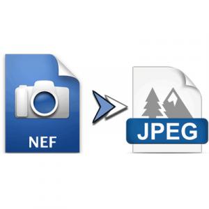 Как сменить формат NEF на JPG