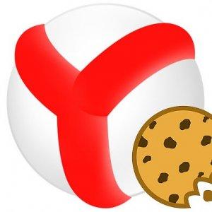 Как очистить cookie в Яндекс.Браузере