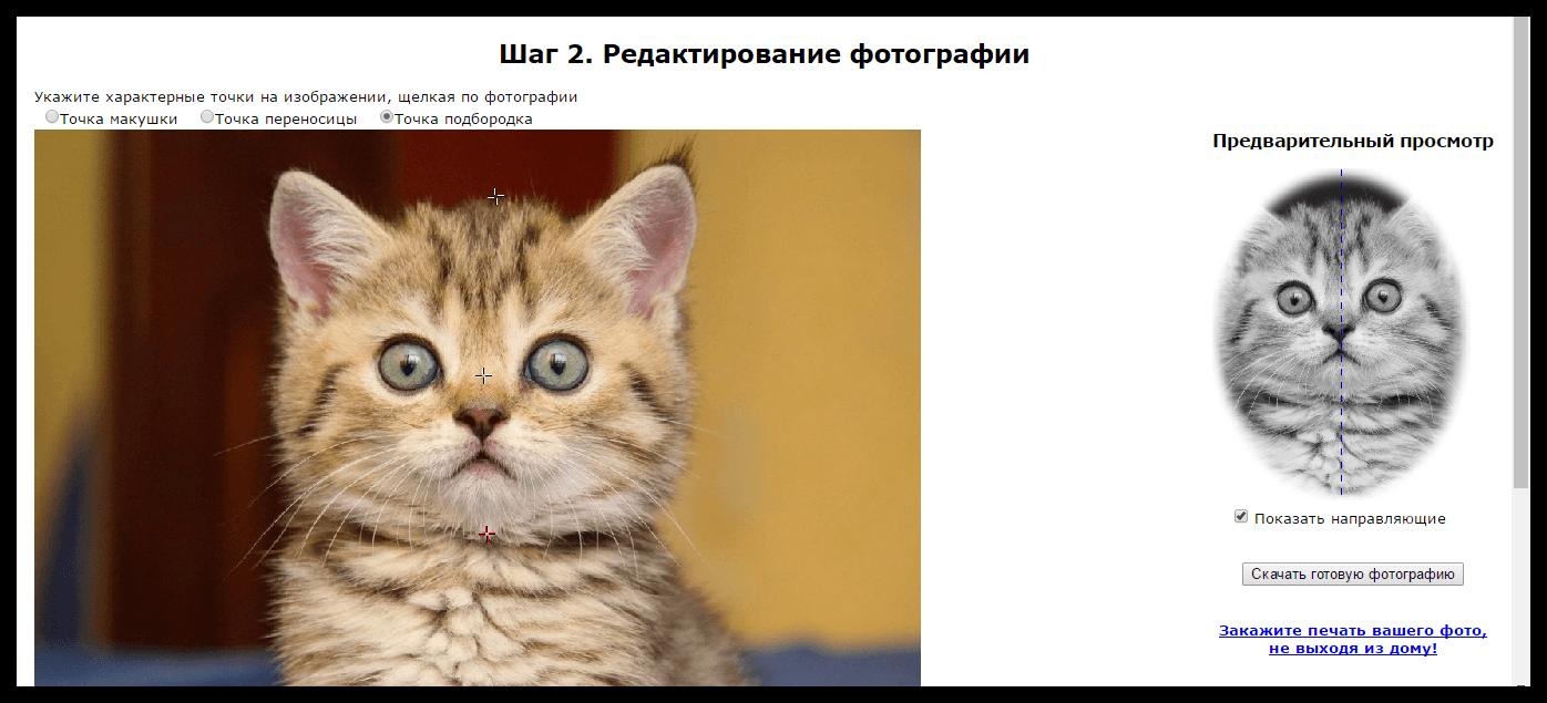 Онлайн редактор фото на документы