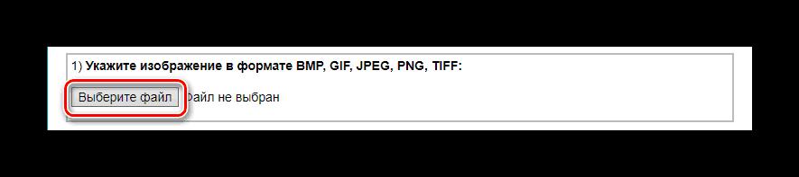 Кнопка Выберите файл IMGonline