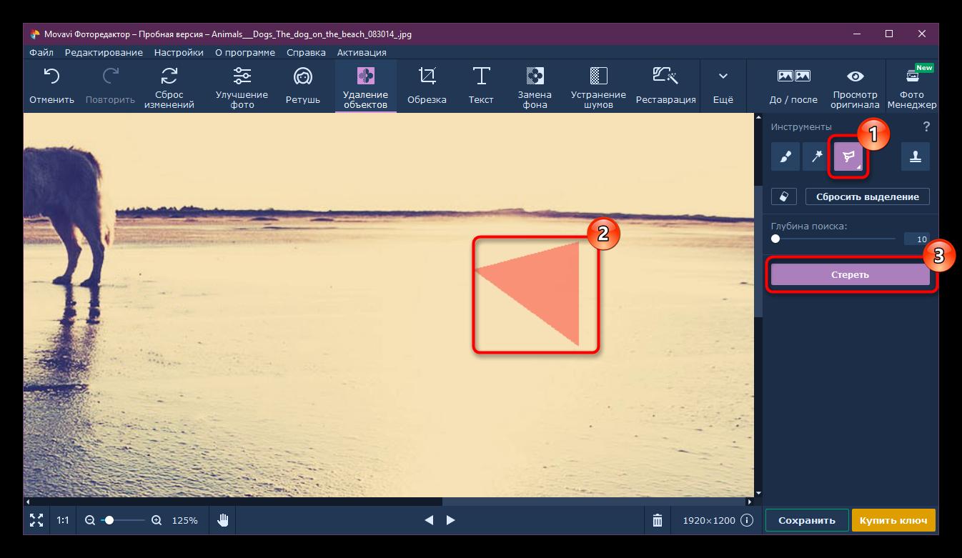 Процесс удаления объекта инструментом Полигональное лассо в Movavi Photo Editor