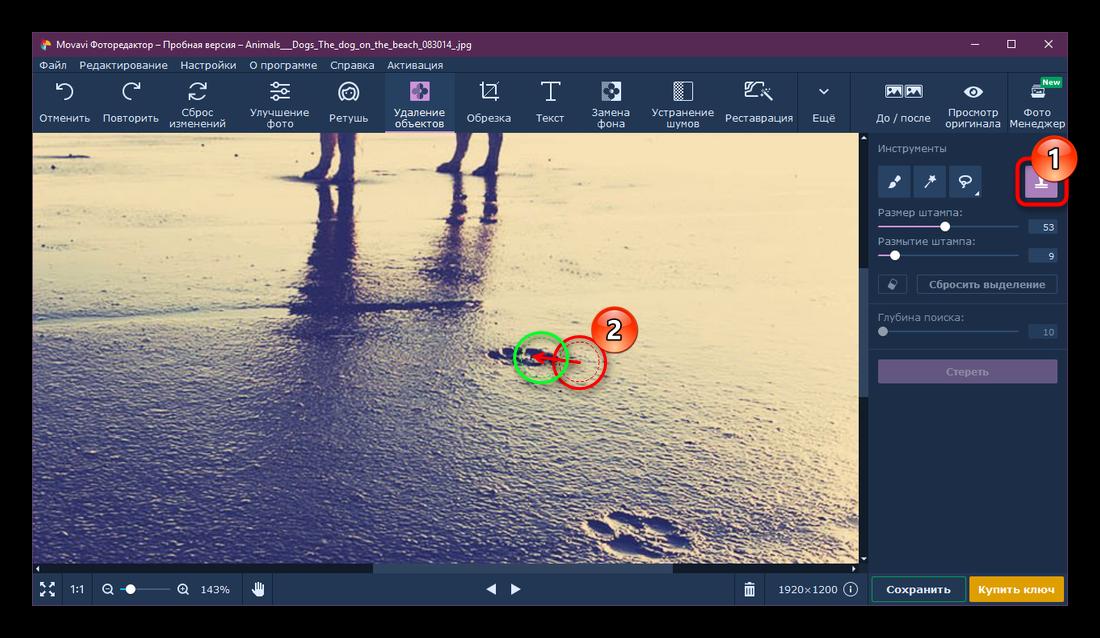 Процесс удаления объекта инструментом Штамп в Movavi Photo Editor